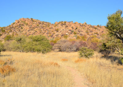 Ameib-Ranch Erongo - Diario di viaggio in Namibia