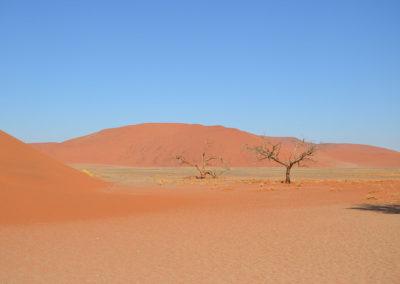 Duna 45 Sossusvlei - Diario di viaggio in Namibia