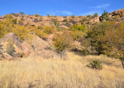 Ameib-ranch - Diario di viaggio in Namibia