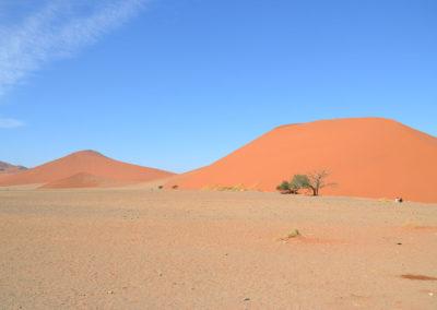 Dintorni duna 45 - Diario di viaggio in Namibia