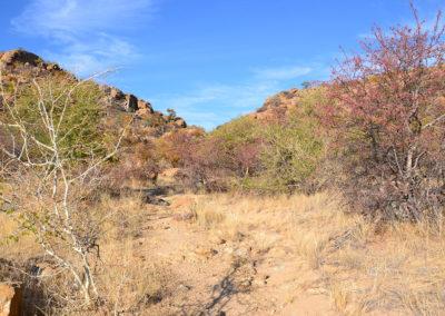 Sentiero Ameib-Ranch - Diario di viaggio in Namibia