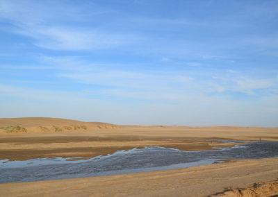 Dorob national Park - Diario di viaggio in Namibia