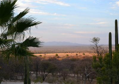Ugab Valley - Diario di viaggio in Namibia