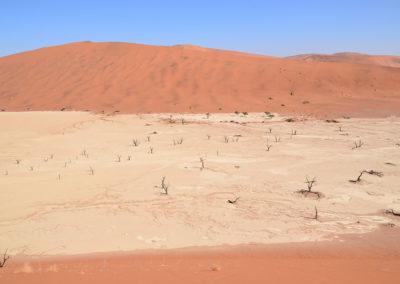 Deadvlei - Diario di viaggio in NamibiaDiario di viaggio in Namibia