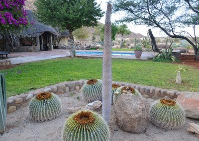 Solitaire Desert Farm - Diario di viaggio in Namibia