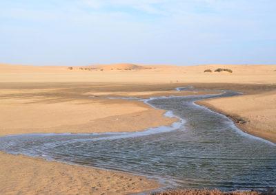 Walvis Bay - Diario di viaggio in Namibia