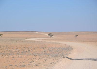 Oasi di Ganab e Hotsas - Diario di viaggio in Namibia
