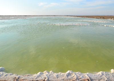 Saline Walvis Bay - Diario di viaggio in Namibia