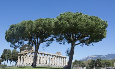 Paestum: un salto nel passato lungo 2.500 anni