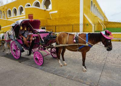 Giro in calesse - Izamal - Diario di viaggio in Messico