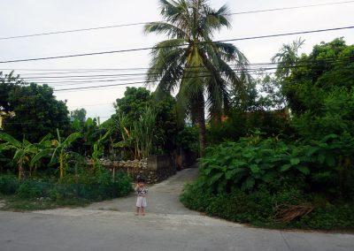 Khu-Dam-Van-Long