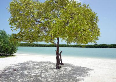 Punta-Cocos---Holbox---Diario-di-viaggio-in-Messico