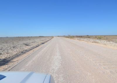 Strada Parco Etosha - Diario di viaggio in Namibia