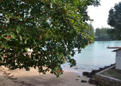 Le Port Guest House Praslin - Diario di viaggio alle Seichelles