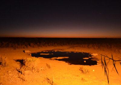 Pozza-Halali-di-notte - Diario di viaggio in Namibia