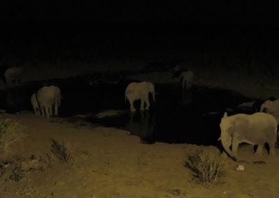 Pozza Halali di notte - Diario di viaggio in Namibia