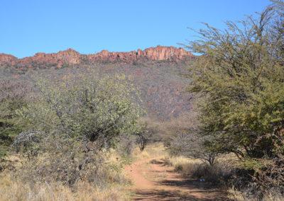 In prossimità del Waterberg - Diario di viaggio in Namibia