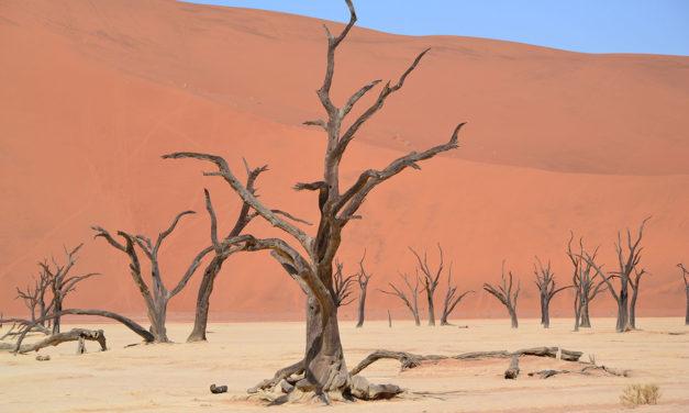 Diario di viaggio in Namibia