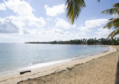 Playa Las Ballenas Las Terrenas - Diario di viaggio a Santo Domingo