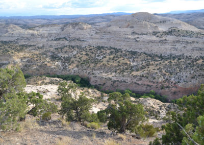 Grand Staircase Escalante National Monument - Diario di viaggio in USA
