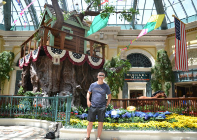 Bellagio Luxury Resort & Casino -Las Vegas Diario di viaggio in Usa