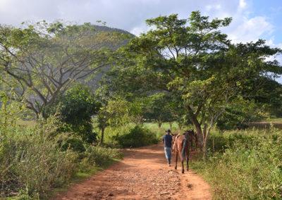 -Escursione a cavallo, Vinales - Diario di viaggio a Cuba