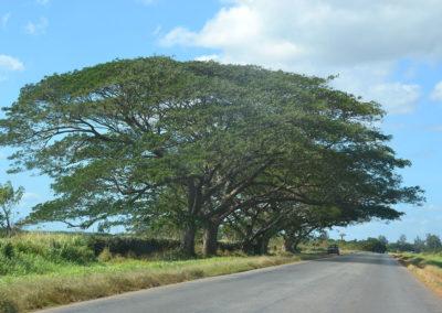 Strada Santa Clara Varadero - Diario di viaggio a Cuba