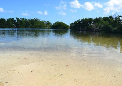 Mangrovie e laghetto Cayo Levisa Spiaggie a est di Cayo Levisa - Diario di viaggio a Cuba