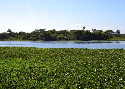 Parque Nacional Cienaga de Zapata - Diario di viaggio a Cuba