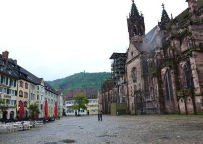 Munsterplatze Cattedrale di Friburgo - Freiburger Munster- ,Friburgo in Brisgovia -Diario di viaggio in Alsazia