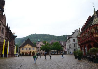 Munstersplatz, Friburgo in Brisgovia -Diario di viaggio in Alsazia