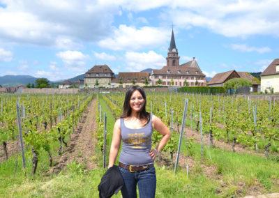 Vigneti con borgo fortificato di Bergheim - Diario di viaggio in Alsazia