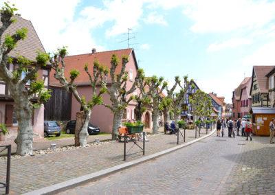 -Grand Rue, Bergheim - Diario di viaggio in Alsazia